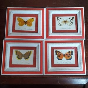 🦕3/$10 Vintage 4 Small Framed Butterfly Prints